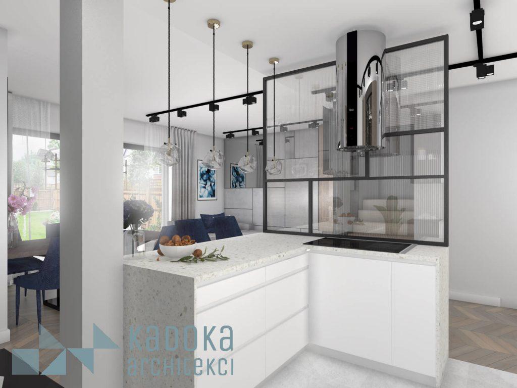 Salon z kuchnią oddzielony scianką szklaną.